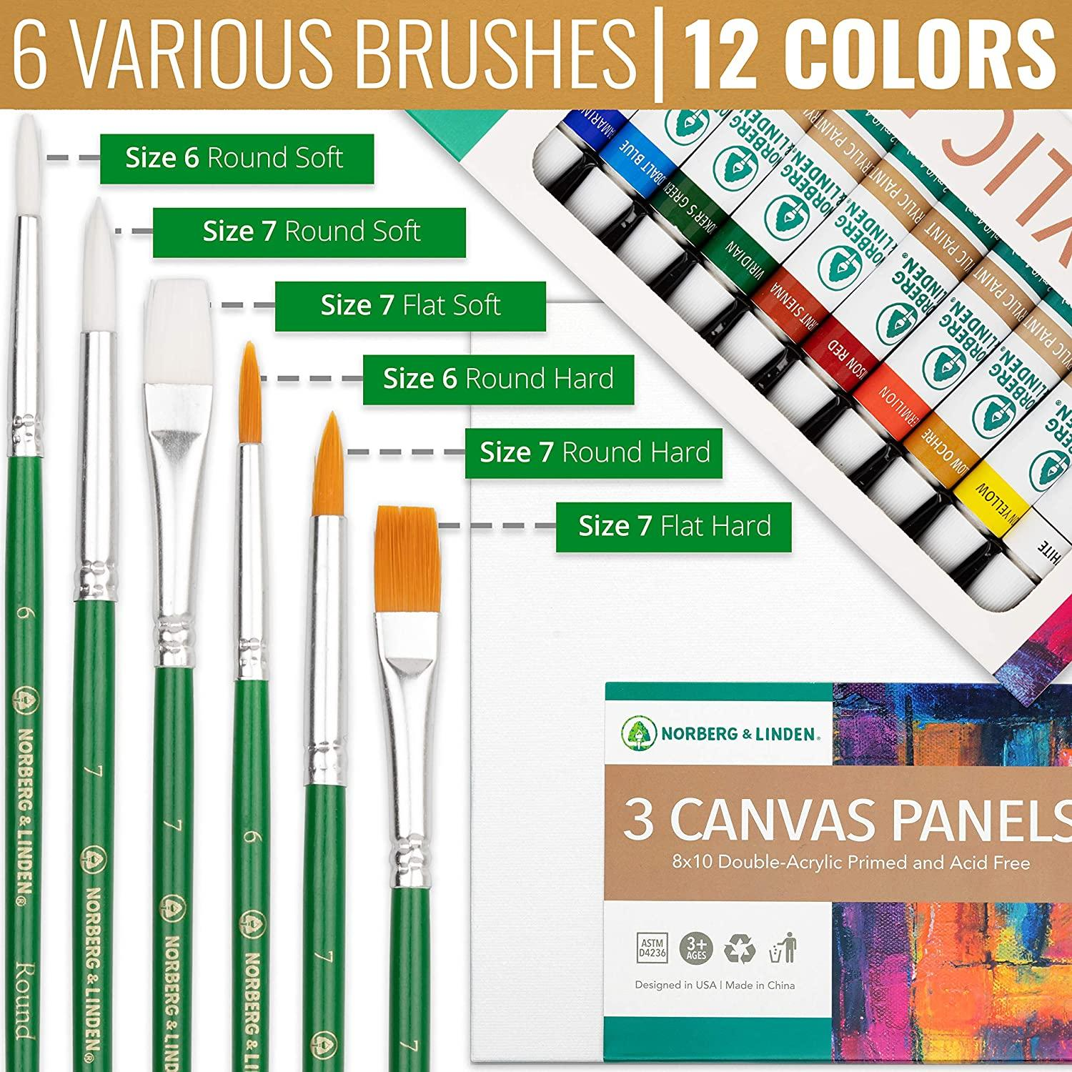 Paint Set with Canvas for Kids and Adults With 12 Vibrant Paints, 6 Painting Brushes, 3 8x10 Canvases, Art Supplies Gifts for Artists, Perfe