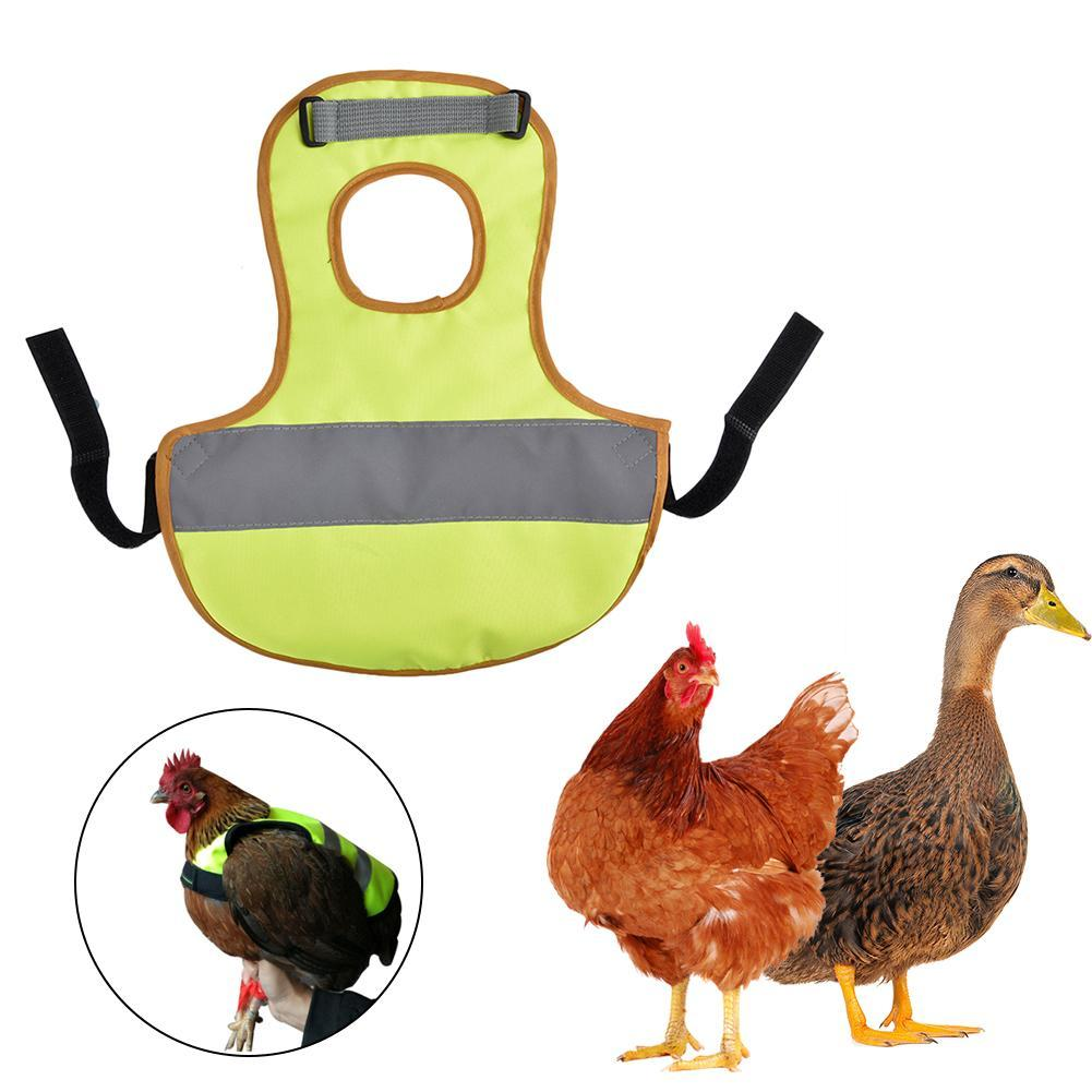 pet reflective vest chicken clothes poultry hen saddle apron feather protection holder for chicken and duck pet products