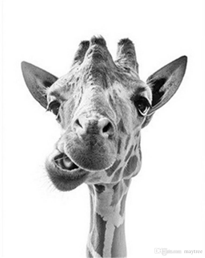 Digital Oil Painting DIY Oil Painting Home Wall Decor Festival Gift -Gray Funny Giraffe 16x20 inch Paint by Numbers for Adults Beginner