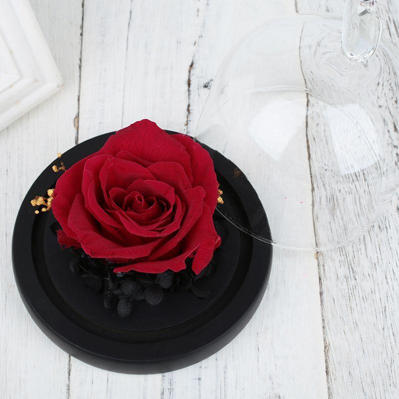 Eternal fiesta de la flor decoración de la boda inmortalidad vidrio conservado flor fresca romántica día de San Valentín rosa cubierta de cristal
