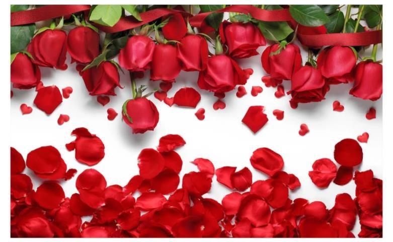 Modern Wallpaper For Living Room Beautiful Romantic Love Red Rose Flower Petals Tv Background Wall Free Computer Wallpapers Free Desktop Wallpaper
