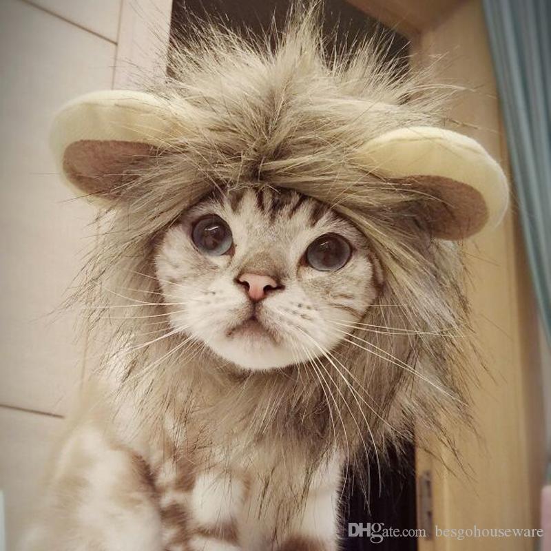 Dia das bruxas animal de estimação leão juba chapéu engraçado traje bonito do animal de estimação cosplay leão peruca cap gato acessórios de natal chapéu de leão partido chapéus de cosplay BH2341 TQQ