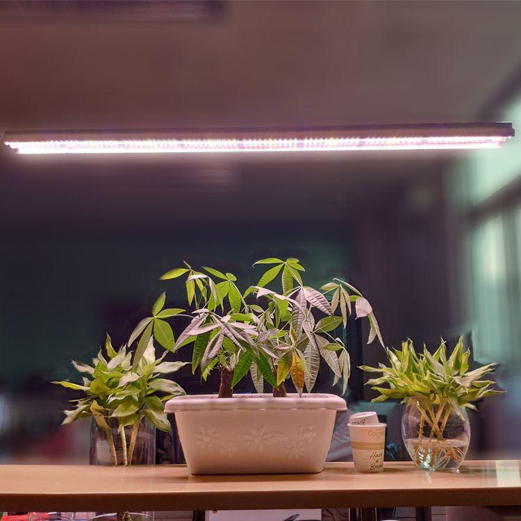 더블 튜브 T5 호 LED 성장 조명,2FT3FT4FT 전체 스펙트럼의 UV 햇빛 핑크 화이트 색상 T5 통합 성장 전등 설비와 밧줄 옷걸이