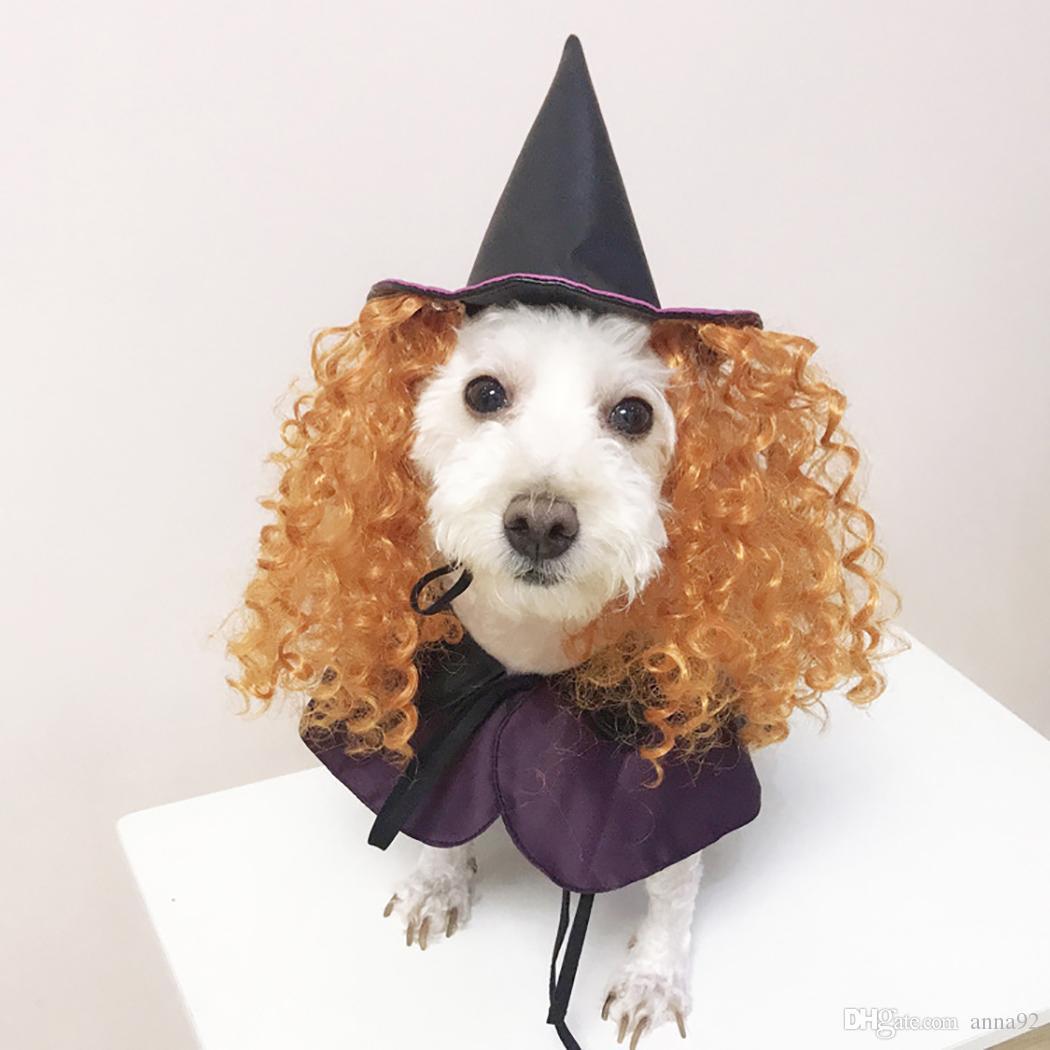 nuovi costumi di Halloween Viola guidata divertenti vestiti del cane con ricci capelli del cappello di Cosplay del costume del cane per Dog Pet regalo trasporto libero all'ingrosso 2019