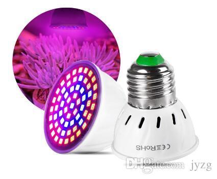 كامل الطيف E27 220V LED النبات ينمو ضوء اللمبة Fitolampy فيتو مصباح حديقة النباتات في الأماكن المغلقة زهرة الزراعة المائية تنمو خيمة صندوق
