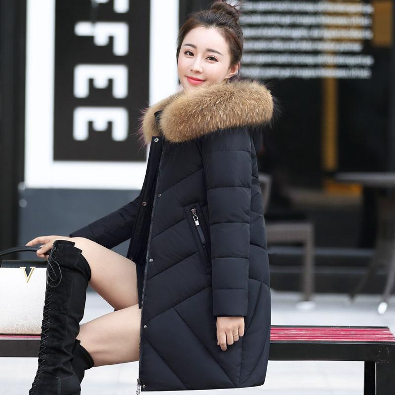 492c2bfb0 New Women's Down Coat Winter 2017 Fashion Real Raccoon Fur Collar Hooded  Long-sleeve Solid Color Thick Slim White Duck Down Coat