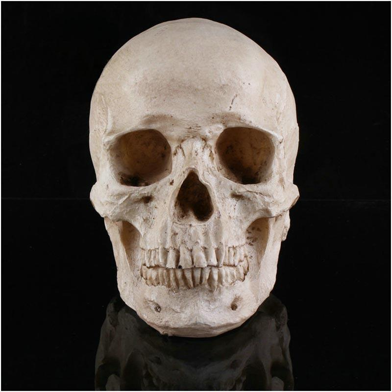 halloween resin skull mask men women masks cosplay costume mask scared mask for adults without pedestal party masks gn m024 masks for parties masks for
