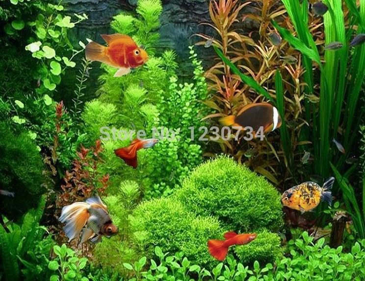 Grosshandel 22 Variationen Mix Paket 20g Waterweeds Samen Aquarium