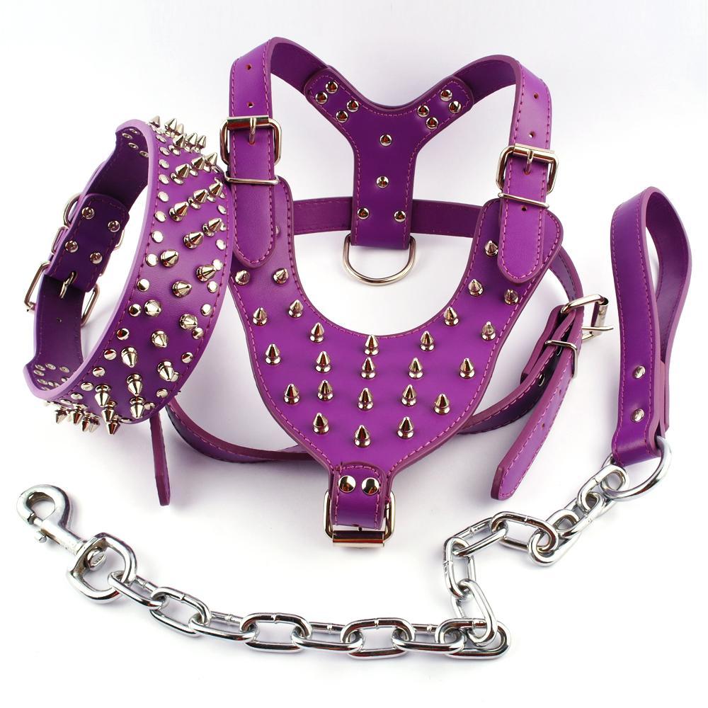 Set coleira e guia roxo cravado Studded Leather Dog Harness Para meduim raças grandes.