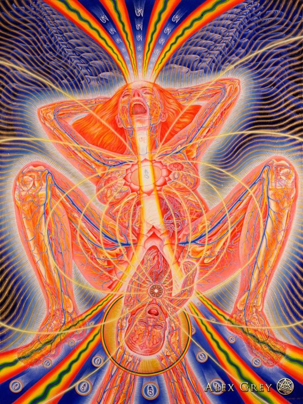 poster 32x24 17x13 Trippy Alex Grey Wall Poster Print Home Decor Wall  Stickers poster Decal--029