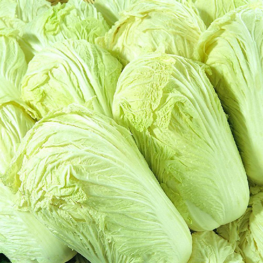 New Delicious 100pcs Chinese Cabbage Seeds Organic Heirloom Vegetables Garden Supplies Interest DIY