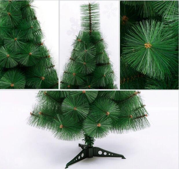 Cheap Christmas Trees Online Rainforest Islands Ferry