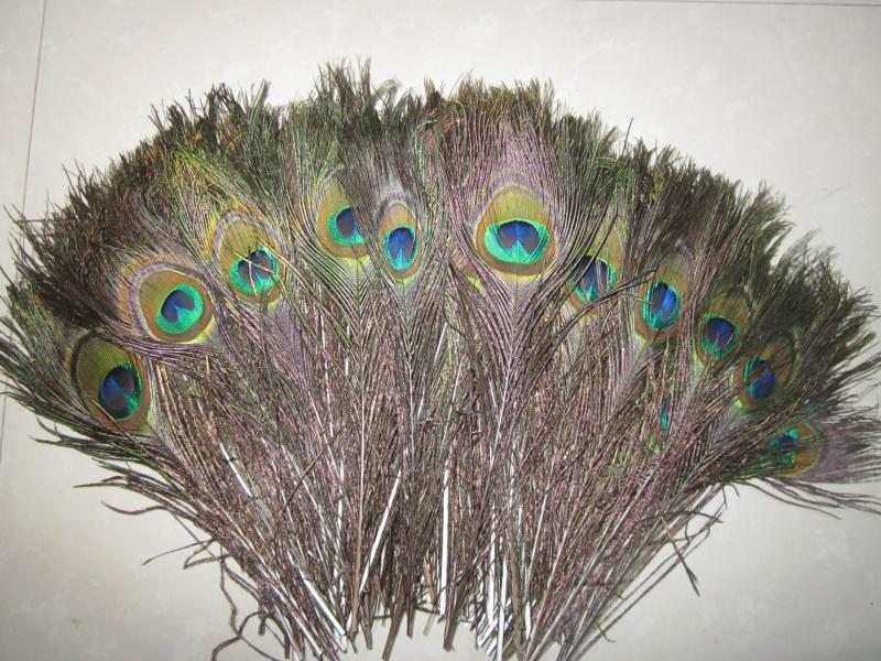 Venta al por mayor 100 unids / lote 27-32 pulgadas 70-80 cm hermosas plumas de pavo real natural ojos para la ropa de bricolaje decoración de la boda