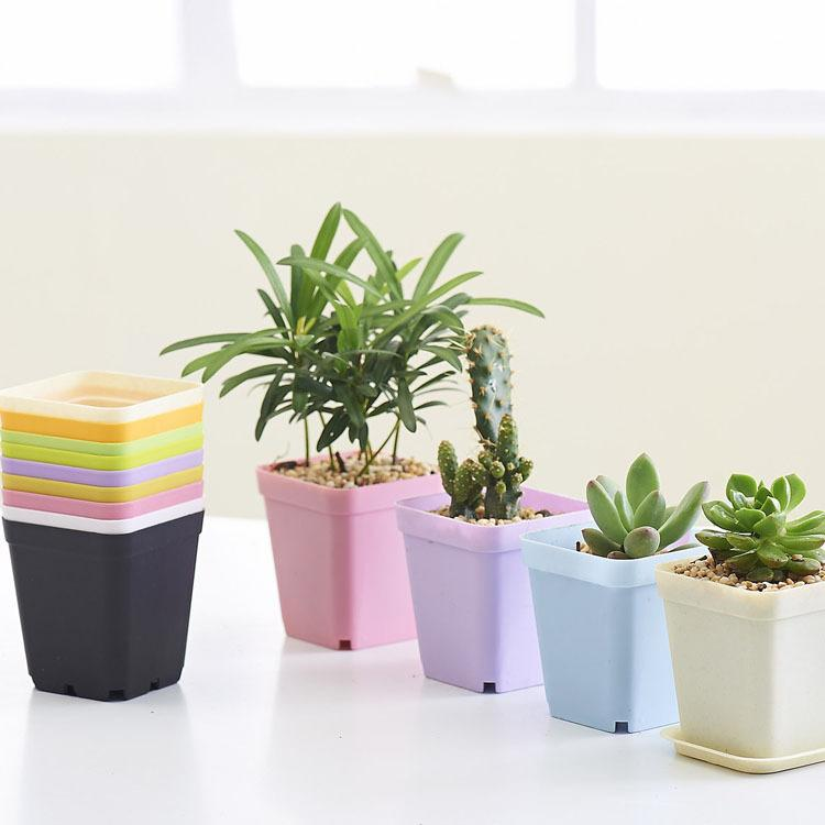 Fashion Bonsai Planters Plastic Table Mini Succulents Plate Gardening Vase Square Flower Pot Colorful