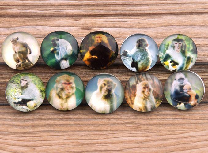 JACK88 / Mélanger les styles Verre Snap Button Monkey 18 mm Snaps Fit Ginger Snap Charm Bracelet Bijoux N811