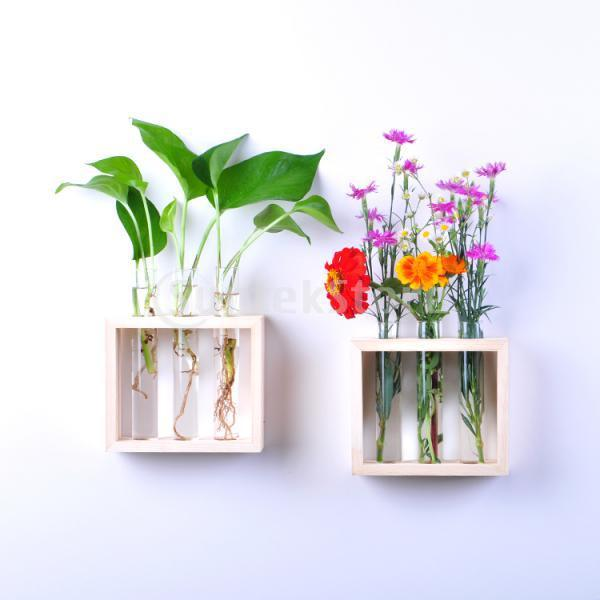 hanging flower vase bottle in wood stand terrarium home party