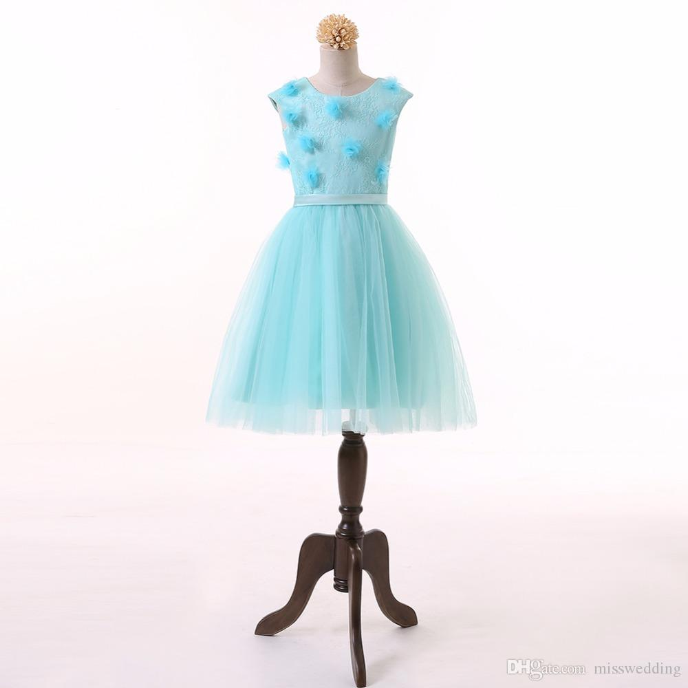 Baby Blue Tulle Flower Girl Dress Lace Design With Handmade Flowers ...