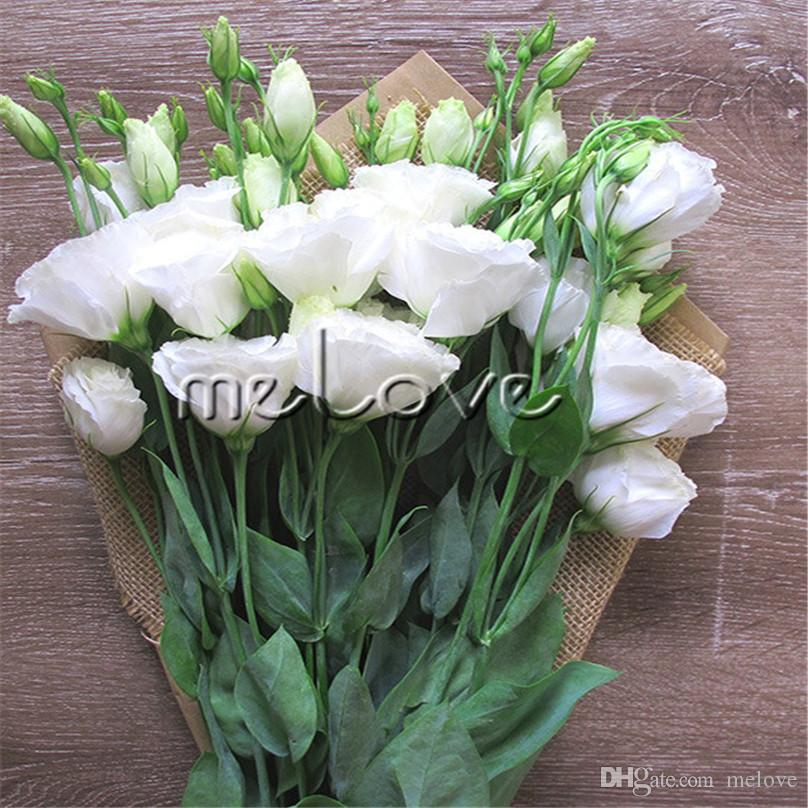 Großhandel 10 Pelletierte Samen Eustoma Lisianthus Weiße Doppelblume