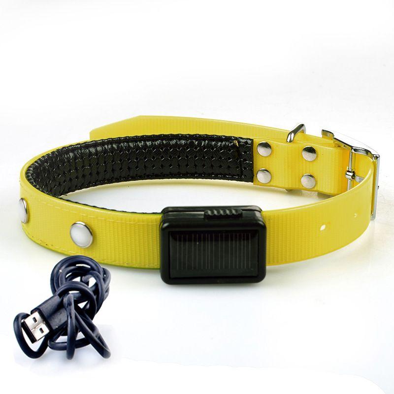USB Şarj Edilebilir Pet Yaka Yanıp Sönen LED Ayarlanabilir Güvenlik Köpek Pet Yaka Işık USB Şarj Ile Daha Renkler Perakende Satış