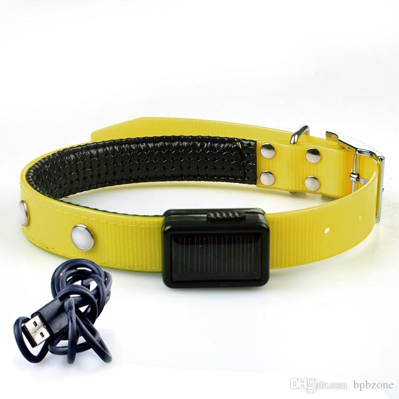 USB 충전식 애완 동물 칼라 LED 깜박이는 조정 가능한 안전 개 애완 동물 칼라 빛 USB 충전기 더 많은 색상 소매 판매