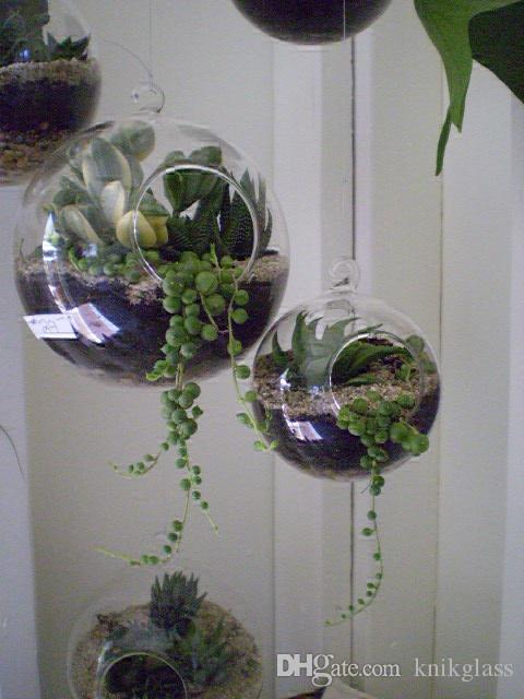 Hanging Air Plants Terrarium With Moss Succulent Glass Candle