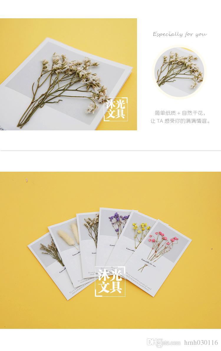 Compleanno di fiori secchi con cavità Biglietto di auguri con biglietti di auguri di compleanno San Valentino