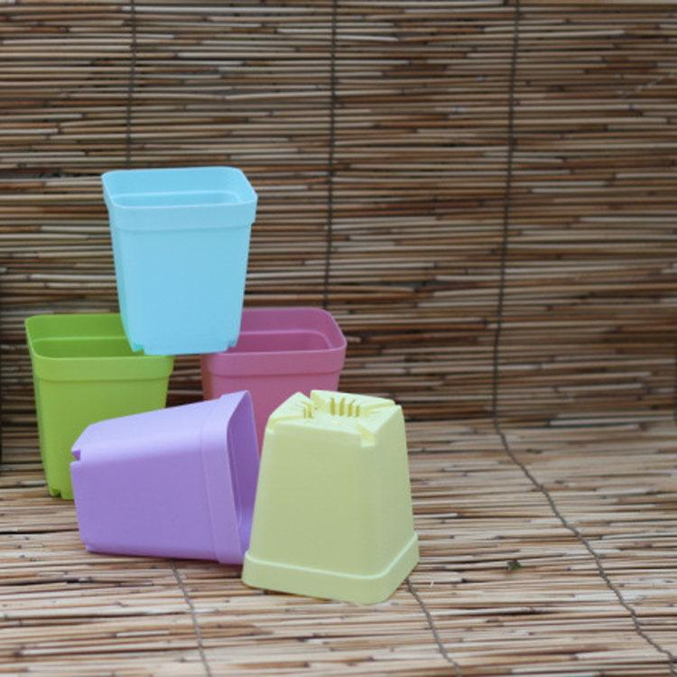 Newest Bonsai Planters Plastic Table Mini Succulents Plant Plate Gardening Vase Square Flower Pot Colorful