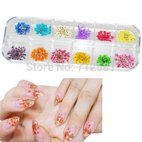 Wholesale 60 Real Dry Dried Flower Nail Art Tips Decoration Diy Art