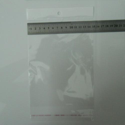 DHL 15 cm * 23 cm 5.9