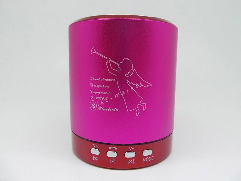 미니 오디오 플레이어 휴대용 카드 스피커 음악 플레이어 T2020A 지원 TF 카드 U 디스크 FM 라디오 T-2020 소매 패키지