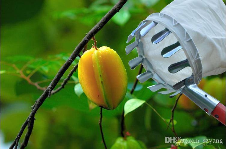HOT!! Convenient Horticultural Fruit Picker Gardening Apple Peach Picking Tools Diameter 14 cm