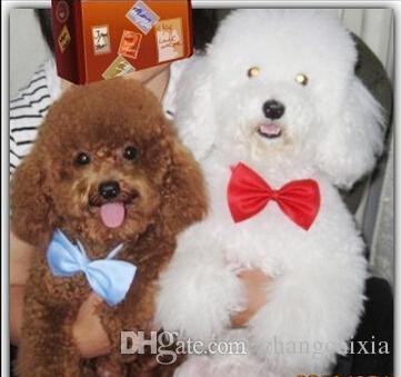 500 Parçalar /  Yüksek Kalite Marka Moda Karışık Renk Köpek Pet Kedi Boyun Kravatlar Başkanı Çiçek