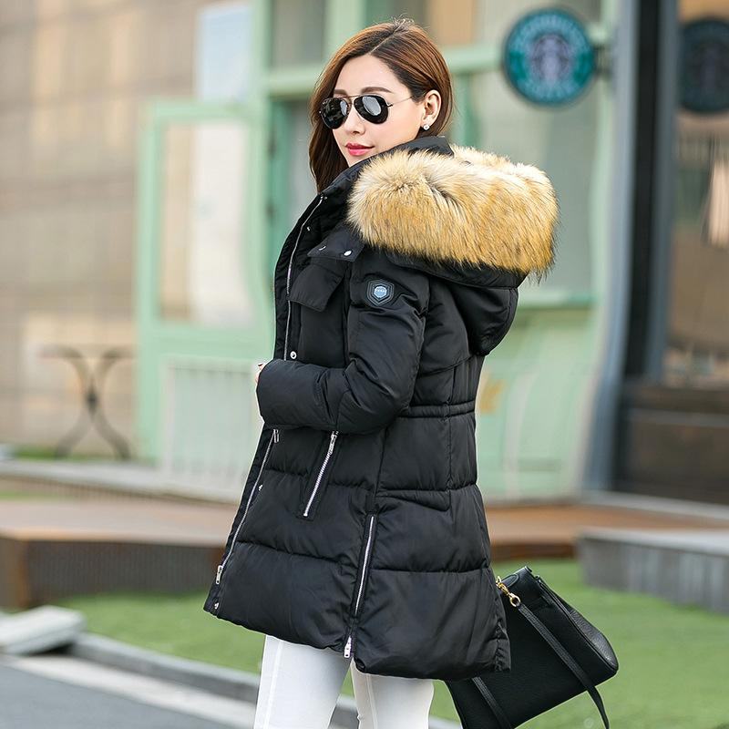 2018 Plus Size Women Winter Coat 2016 Long Jacket Big Fur Collar ...