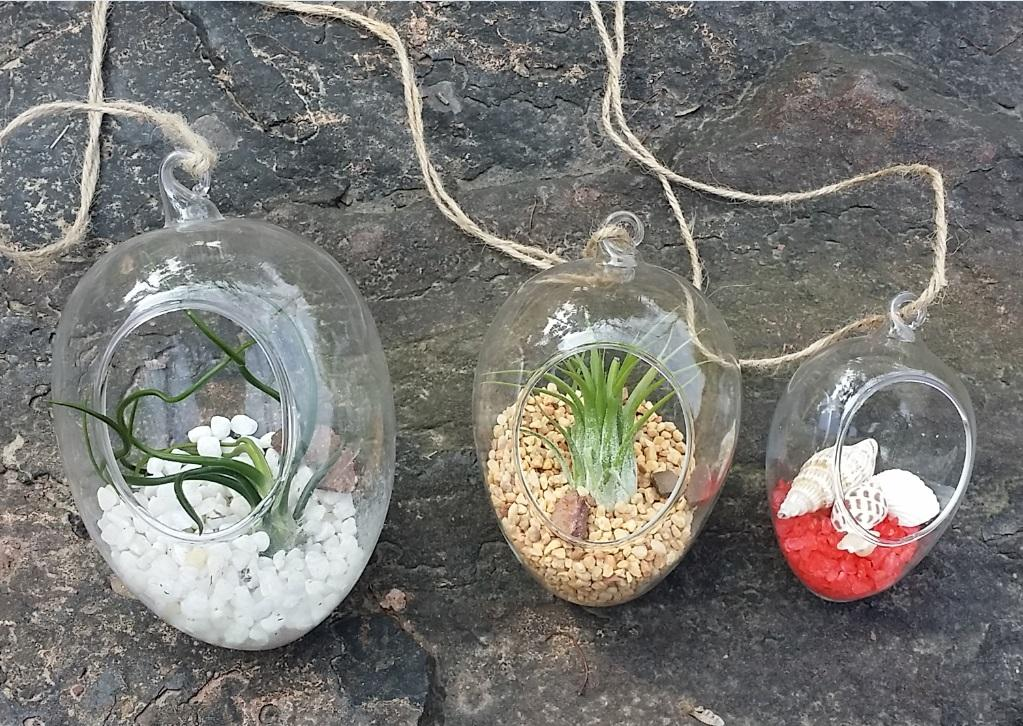 Egg Shape Glass Terrarium Kit Garden Succulent Planters Air Plant