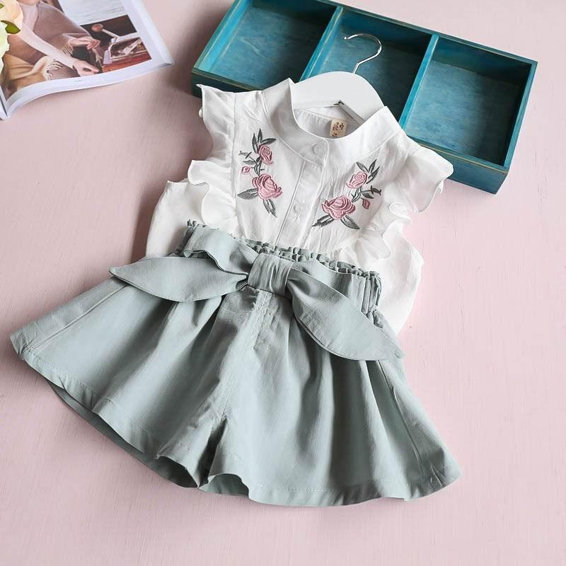 140cfa90ac9 2019 Retail Summer New Children Girls Clothing Sets Embroidery Chiffon  Shirts+Loose Shorts Two Piece Fashion Outfits 2 6T E315295 From Hemane