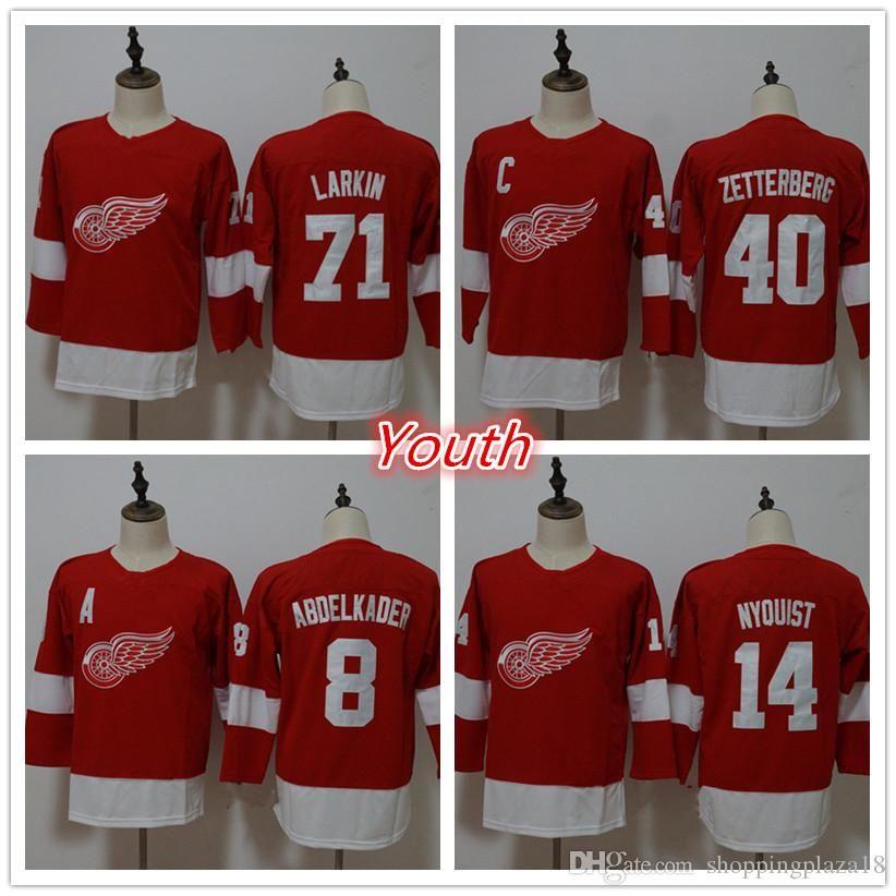 ece612fefa4 Youth Detroit Red Wings 71 Dylan Larkin 40 Henrik Zetterberg 8 ...