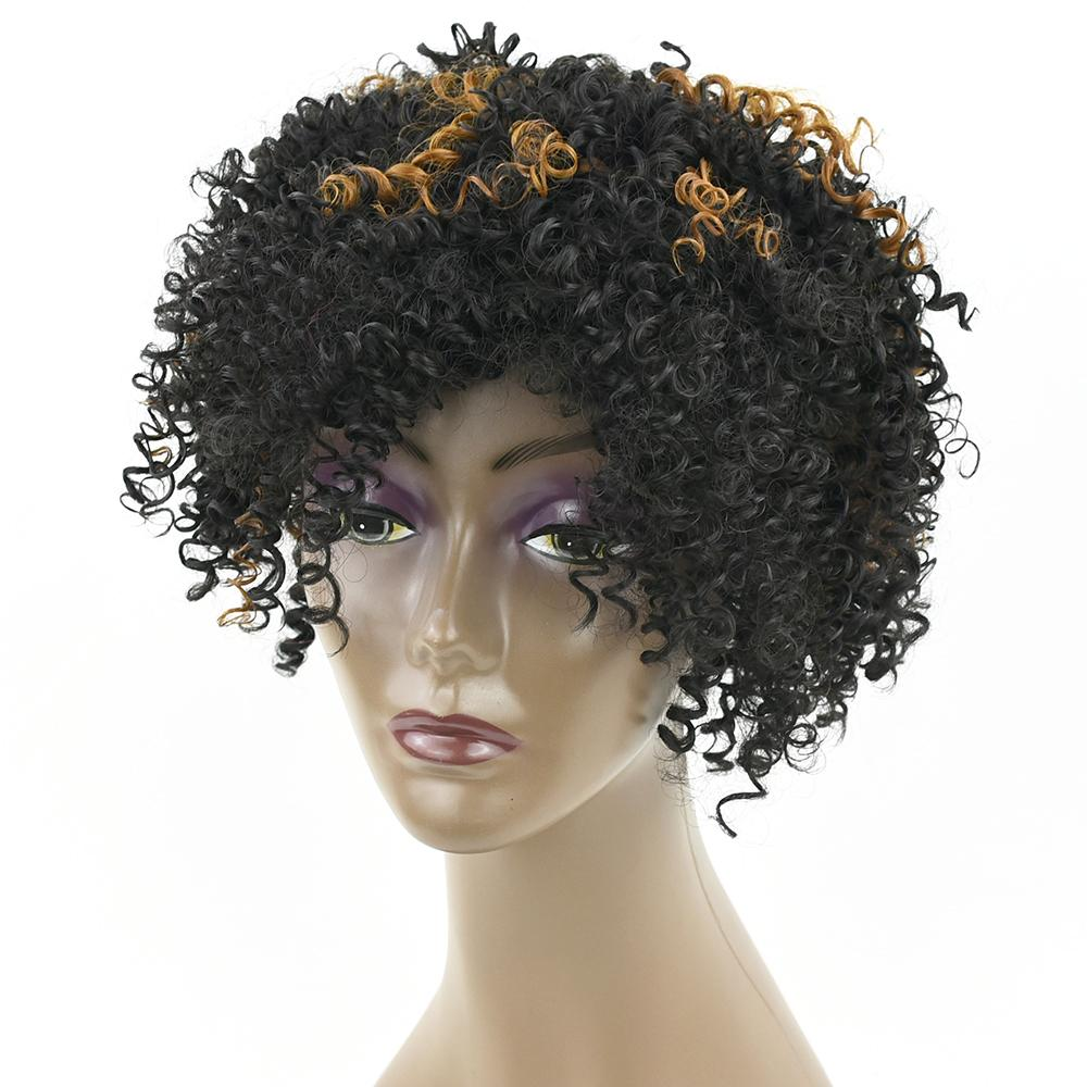 Kinky Curly Short Synthetic Hair Wig For
