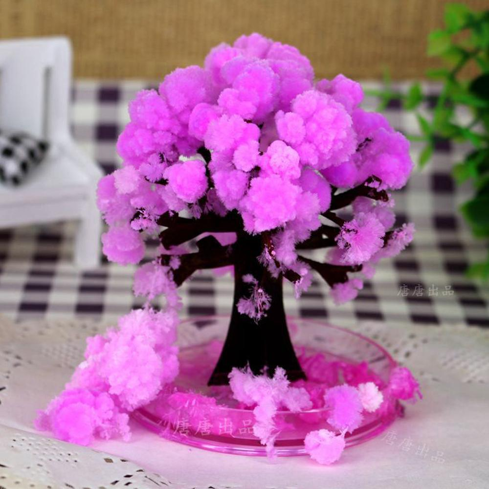 iWish 10x8cm Pink Desktop Cherry Blossom Cool Japan!ThumbsUp! Magic Japanese Sakura Tree-Brand New Made in Japan Grow Paper Trees Christmas