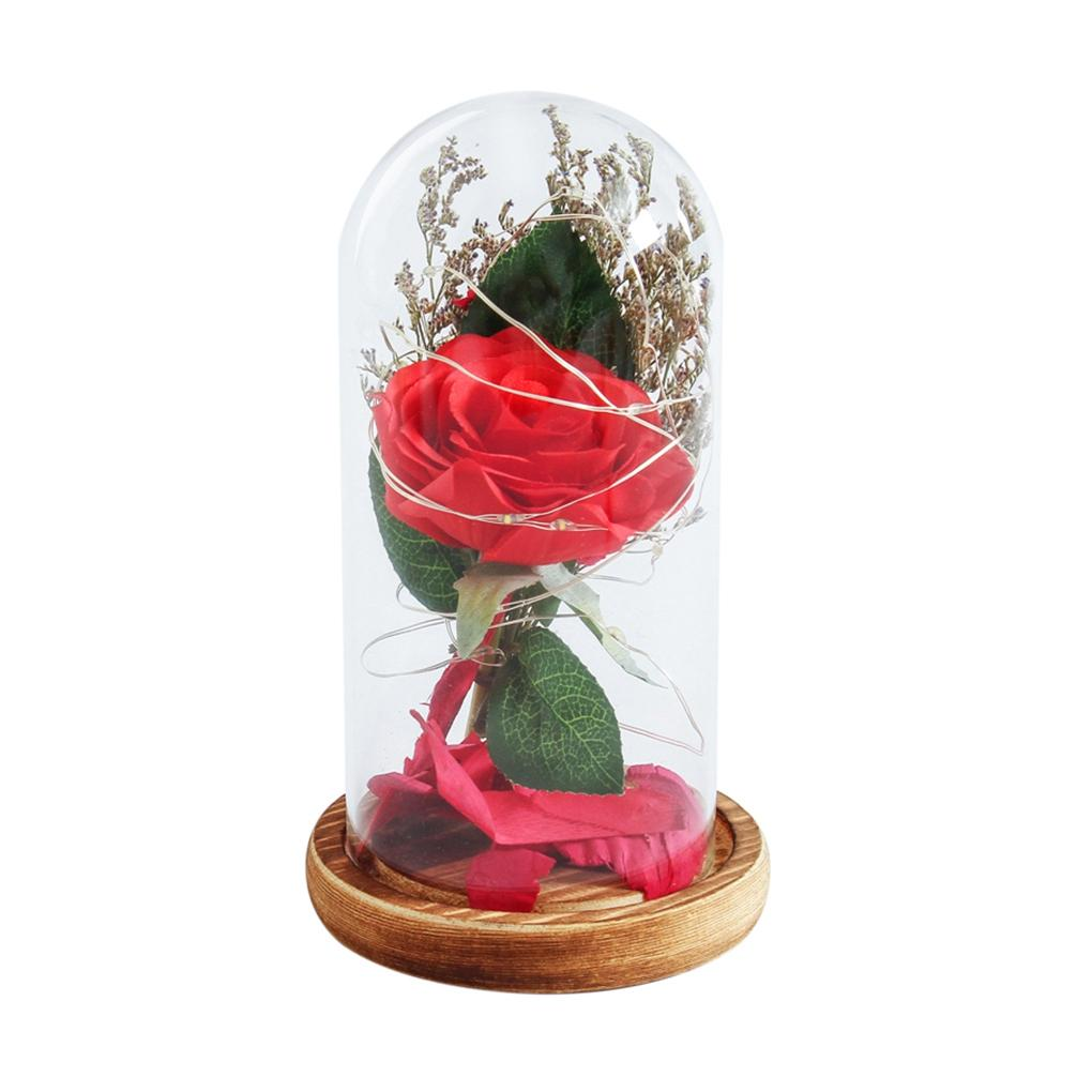 Shgo Birthday Gift Red Rose With Fallen Petals In A Glass Dome On A