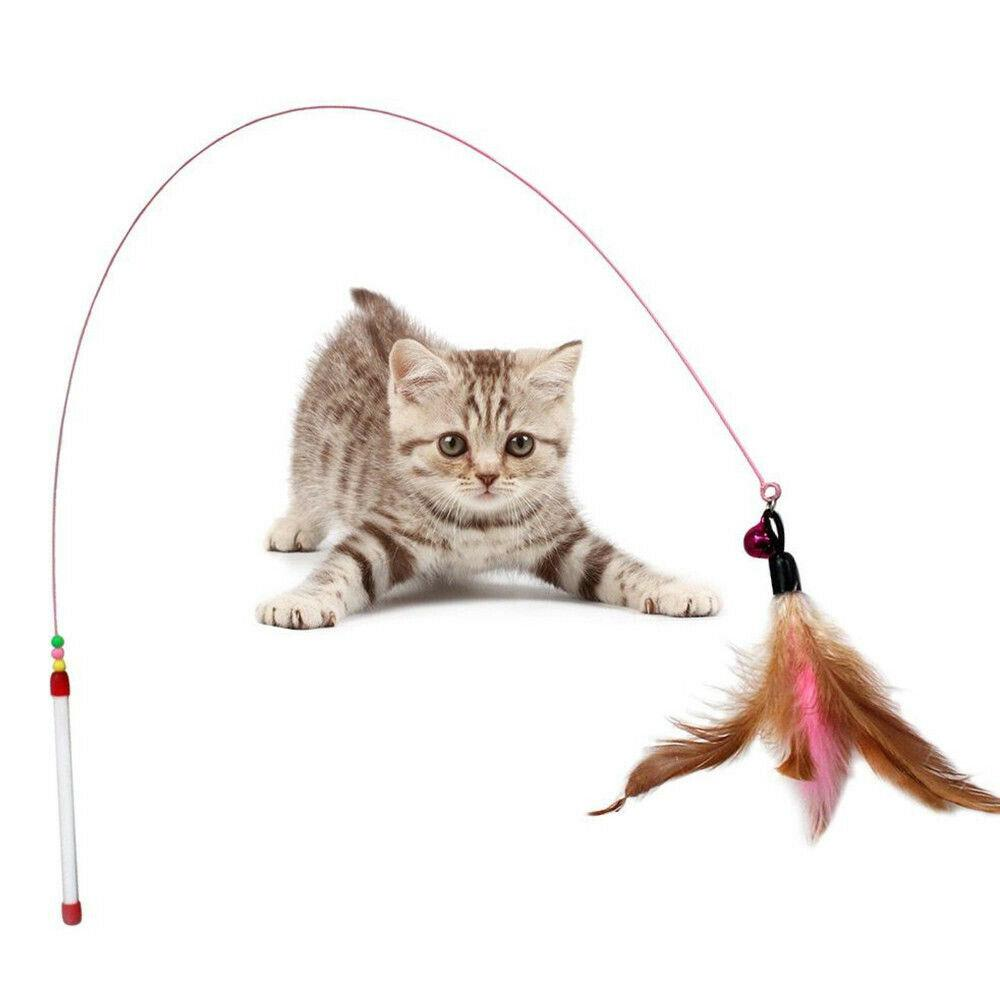 Divertimento Gattini Giocattoli Cat Feather Bell Bacchetta Teaser Rod Bead Gioca Pet Ball Toy Giochi Funny for Cats Scratching Playing Training Pet
