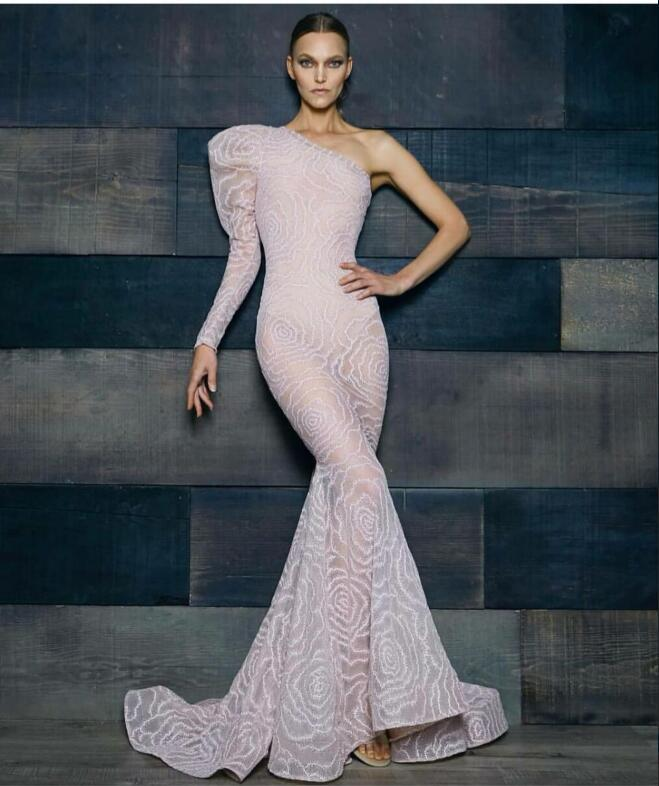 Evening dress Long dress Long sleeve Lace One-Shoulder Zipper Mermaid Standby period 15 days Customizable in any size Modern 46