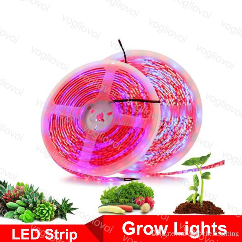 LED Grow Lights 5M Phyto Lamps Full Spectrum LED Strip Light 300 LEDs 5050  Chip Fitolampy Waterproof For Greenhouse Hydroponic plant DHL