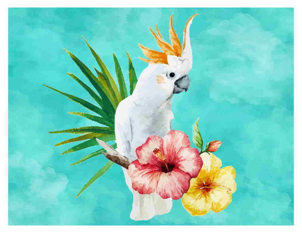 b2a3dcd38 Custom Made T Shirt Gorgeous Moluccan Cockatoo Painting Flowers Parrot  BirdMen Women Unisex Fashion Tshirt Cotton Shirts White T Shirts From ...