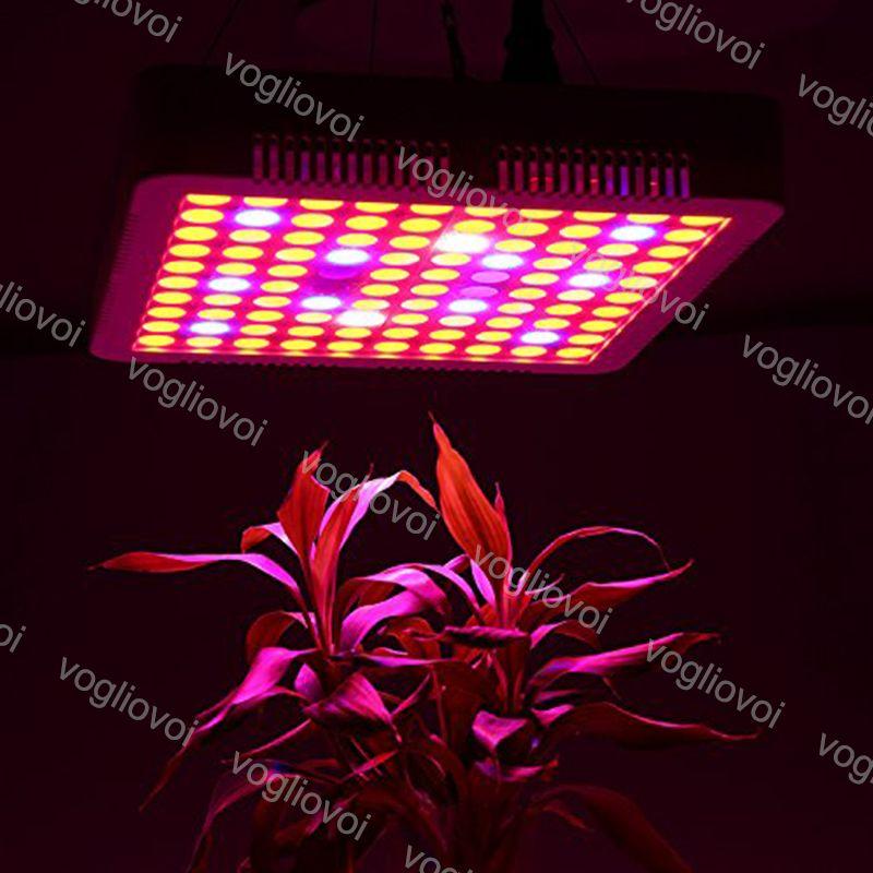 Full Spectrum 300W Led Grow Light Square Good Radiator Led Grow Tent  Covered Green houses Lamp Plant Grow Lamp for Veg Flowering DHL