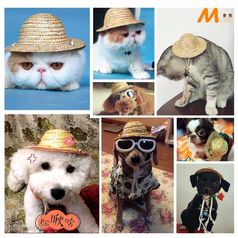 Pet Dog Hat Dog Straw Hat Cat Hat Cat And Dog Photo Props Service
