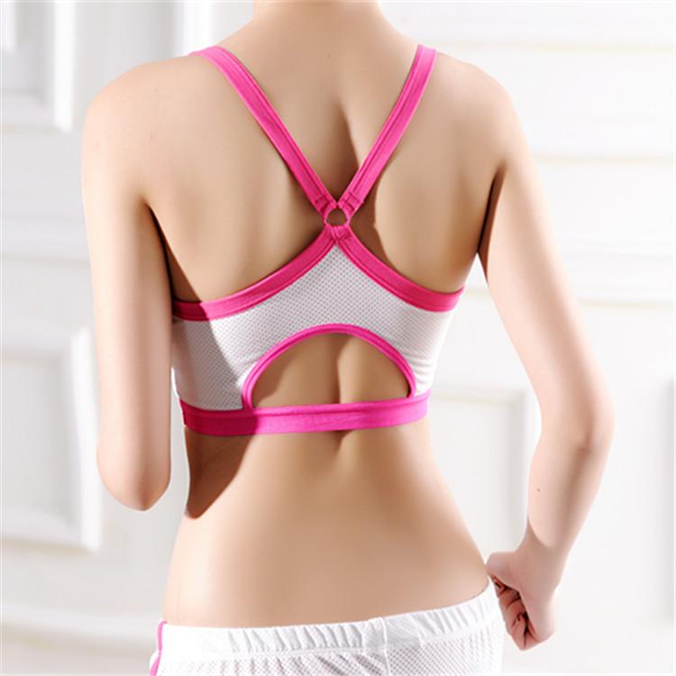 3ca3645477b Fashion Sexy Women Crop Top Colourful Cropped Padded Bra Tank Tops ...