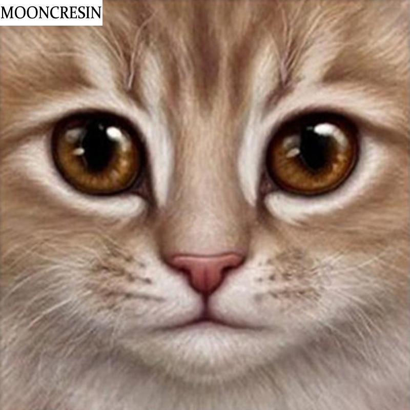 Satın Al Toptan Elmas Boyama Kedi Kafa çapraz Dikiş Mozaik Resimleri