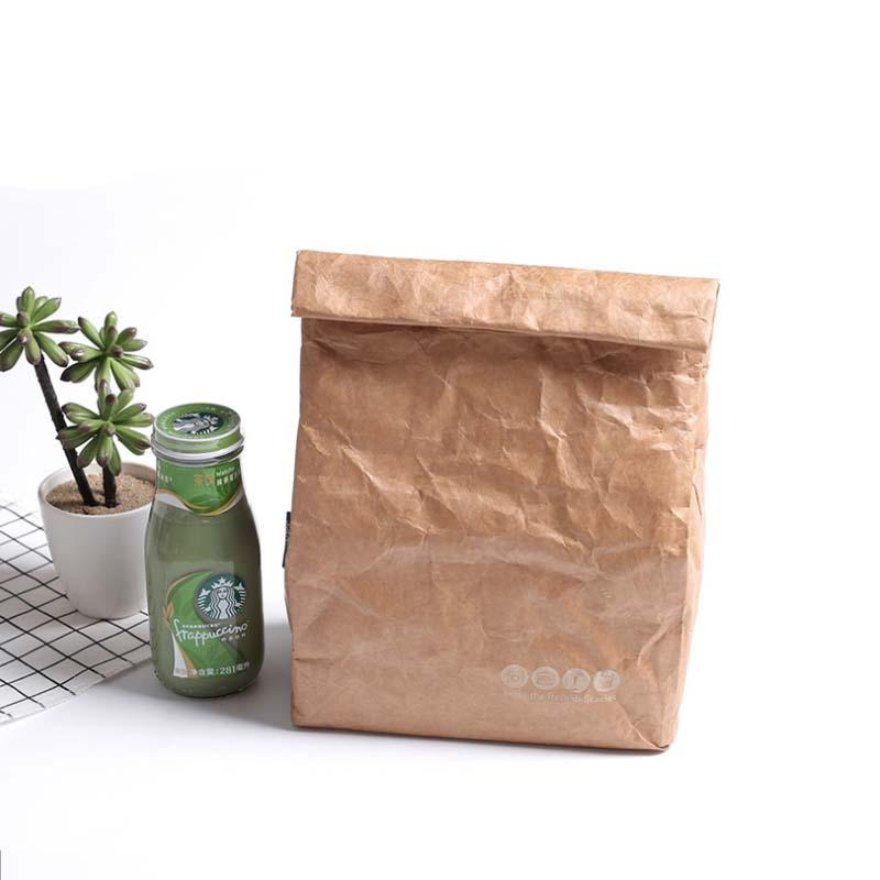 Fold Package Kraft Paper Lunch Bag Environmental Package DuPont Paper Aluminum Film Lunch Box Bag Picnic Insulation Ice Pack 6L