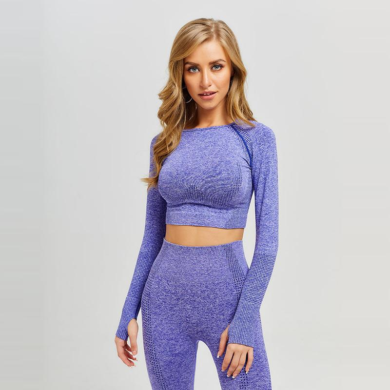 Nouveau Femmes Seamless Yoga Haut À Manches Longues Entraînement Tops Fitness Gym Crop Top Athlétique Gym Shirt Femmes Vêtements De Sport Active Wear