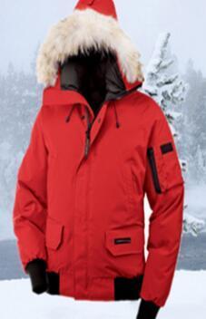 best website 1e4ed 29821 2019 Top Goose Winter Down Piumino con cappuccio Black Pattern Canada Uomo  Donna Zippers Warm Down Jacket Outdoor Coats Commercio all ingrosso